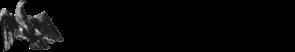 info-kopf